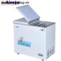 Tủ đông ALASKA BD-2099N (200 lít)