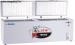 Tủ đông nắp dở HB-790 (790 lít)