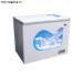 Tủ đông Funiki FCF299S1, 1 ngăn đông, dung tích 290 Lít