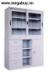 Tủ Sắt Hòa Phát  CAT118G/118-4D